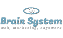 Brain System Web Agency